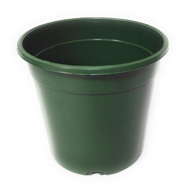 CC17 Verde